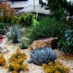 garden-inspiration-by-gabriel-succulent13.jpg
