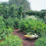 garden-path-ideas8.jpg