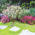 garden-path-ideas32.jpg