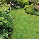 garden-path-ideas36.jpg