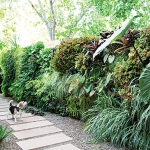 garden-path-ideas37.jpg