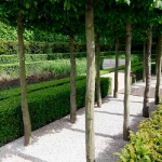 garden-path-ideas63.jpg