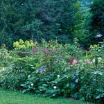 garden-tours-by-martha5-4.jpg