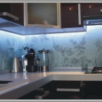 glass-photo-panel-for-kitchen3-2.jpg