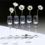 glass-vases-creative-ideas2-5.jpg