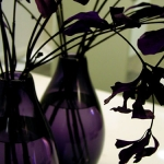glass-vases-creative-ideas5-4.jpg