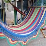 hammock-in-garden2-11.jpg