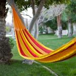hammock-in-garden2-2.jpg
