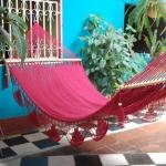 hammock-in-garden2-3.jpg