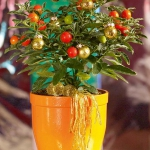home-flowers-in-new-year-decorating3-5.jpg