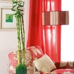 home-plants-creative-ideas1-2.jpg