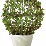home-plants-creative-ideas3-2.jpg