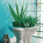 home-plants-creative-ideas5-1.jpg
