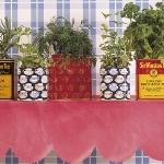 home-plants-creative-ideas5-11.jpg