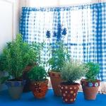 home-plants-creative-ideas5-12.jpg