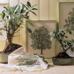 home-plants-creative-ideas5-13.jpg