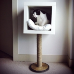 ikea-furniture-hacks-for-cats2-1