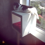 ikea-furniture-hacks-for-cats2-2