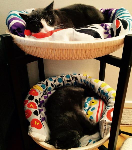 Своими руками постель для кошки 128
