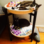 ikea-furniture-hacks-for-cats5-2