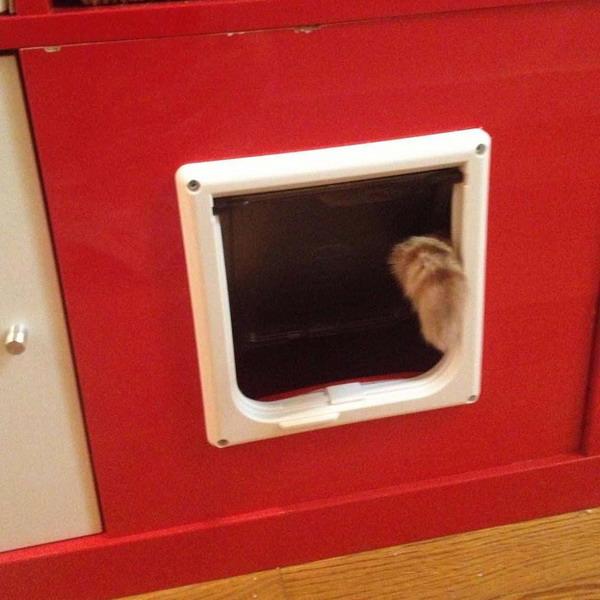 Как сделать дверь для кошки своими руками 12