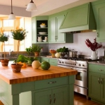 kitchen-green-n-lime1-2.jpg
