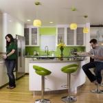 kitchen-green-n-lime8-2.jpg