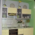 kitchen-green-n-lime8-6kuhdvor.jpg