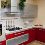 kitchen-red4-8.jpg