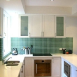 kitchen-white-plus-green4.jpg