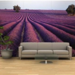 lavender-home-decorating-ideas6-1.jpg