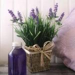 lavender-home-decorating-ideas2-10.jpg