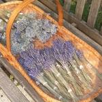 lavender-home-decorating-ideas2-2.jpg