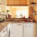 mini-kitchen-smart-ideas4-2.jpg
