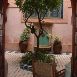 morocco-courtyards-and-patio3-2.jpg