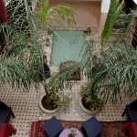 morocco-courtyards-and-patio8-2.jpg