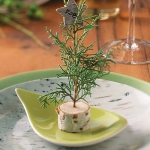 new-year-decorations-from-pine-branches-on-plate3.jpg