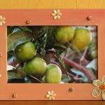 photo-frame2.jpg