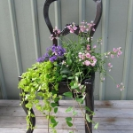 planting-flowers-in-chairs2-4.jpg