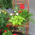 planting-flowers-in-chairs2-7.jpg