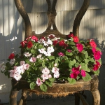 planting-flowers-in-chairs2-9.jpg