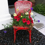 planting-flowers-in-chairs-colorful1.jpg
