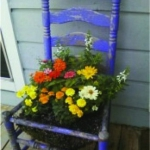 planting-flowers-in-chairs-colorful11.jpg