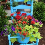 planting-flowers-in-chairs-colorful4.jpg