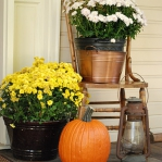 flowers-on-chairs-decorating7.jpg