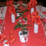 poppy-decorated-table-setting2-2.jpg