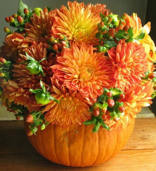 Осенние цветы в тыкве, интервью с магазин живых цветов новосибирск
