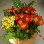 pumpkins-vase-new-floral-ideas3-3.jpg