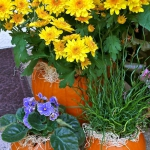 pumpkins-vase-new-floral-ideas6-3-1.jpg