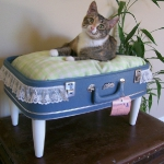 recycled-suitcase-ideas-pets-bed1.jpg